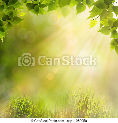 Beauty natural backgrounds for your design - csp11080050