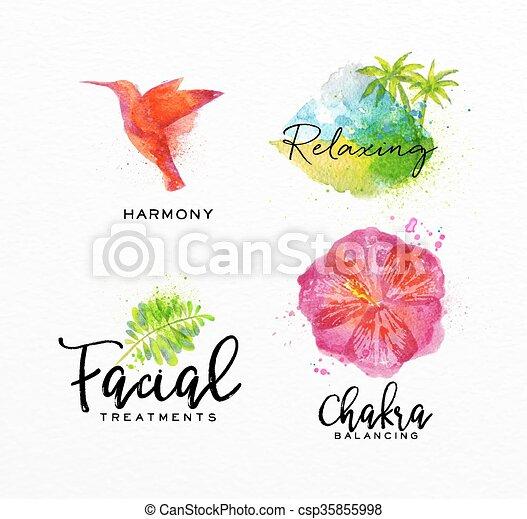 Beauty Natural Spa Symbols Bird Symbols Beauty Natural Spa Drawing