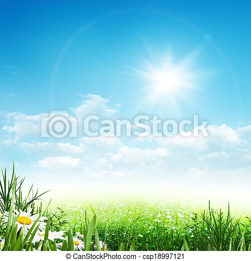 Beauty summer, abstract environmental backgrounds with daisy flowers - csp18997121