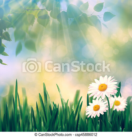 Beauty summer day, abstract rural landscape with blooming flowers and green grass - csp45886012
