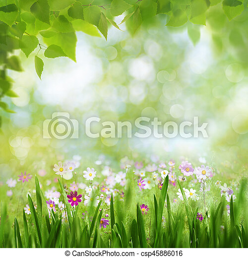 Beauty summer day, abstract rural landscape with blooming flowers and green grass - csp45886016
