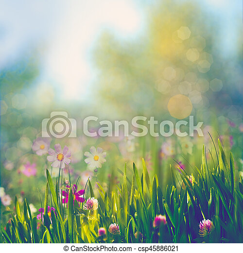 Beauty summer day, abstract rural landscape with blooming flowers and green grass - csp45886021