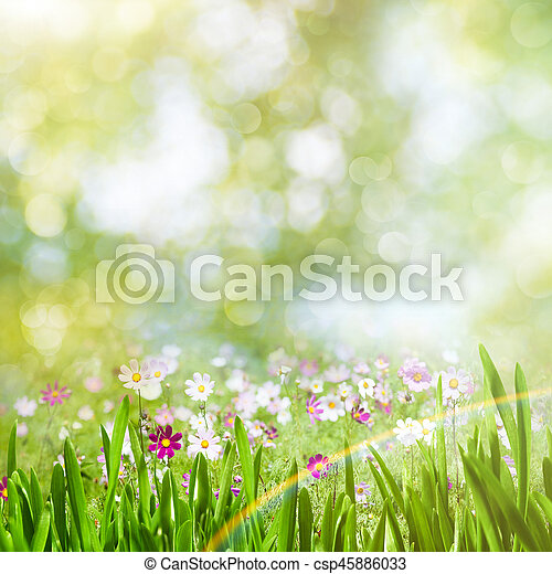 Beauty summer day, abstract rural landscape with blooming flowers and green grass - csp45886033