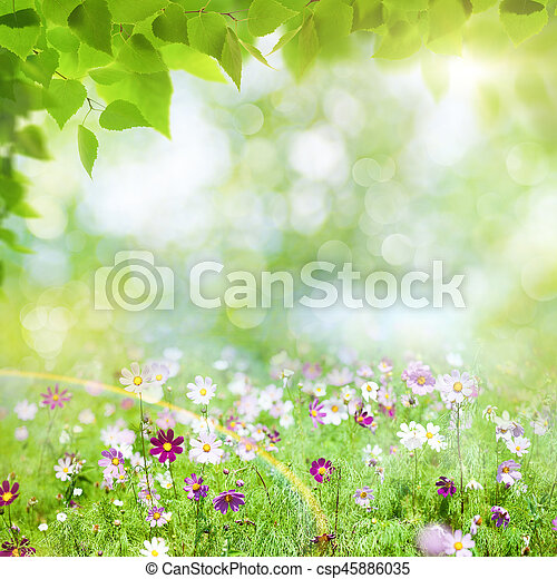 Beauty summer day, abstract rural landscape with blooming flowers and green grass - csp45886035