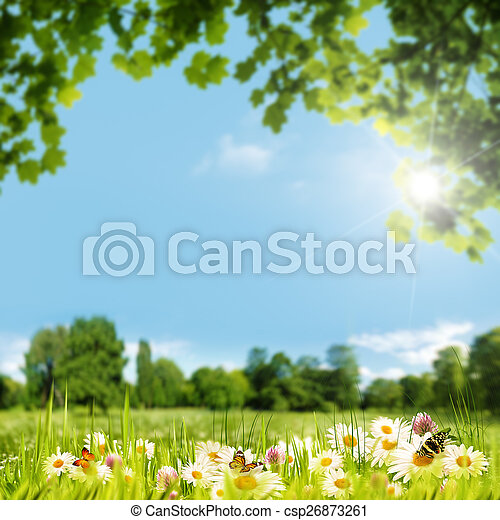 Beauty summer day on the meadow, natural backgrounds - csp26873261