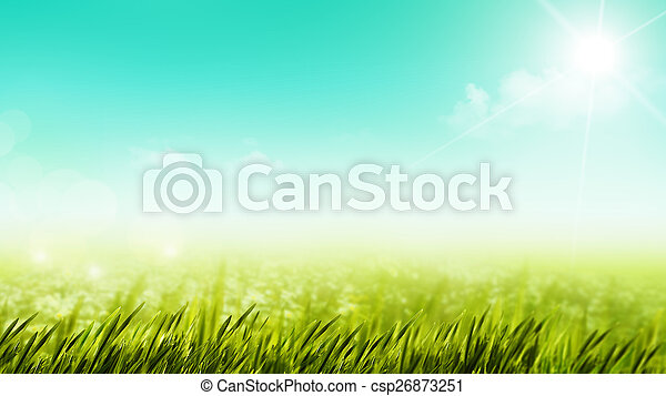 Beauty summer day on the meadow, natural backgrounds - csp26873251
