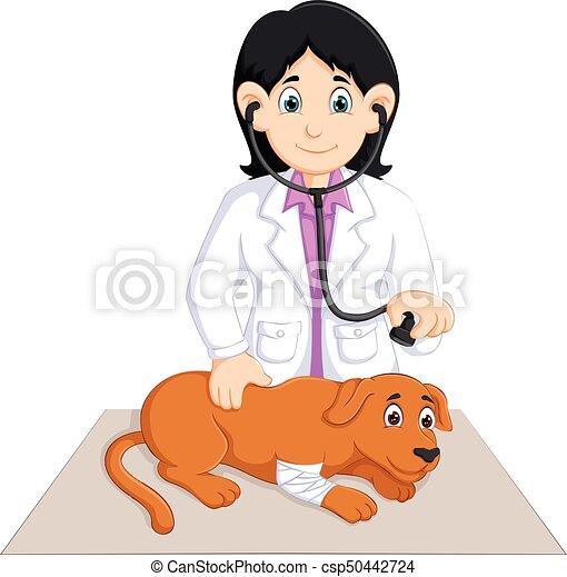 Vector illustration of beauty veterinarian cartoon check dog.