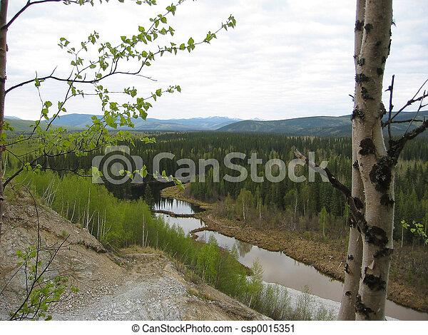 Beaver's creek - csp0015351