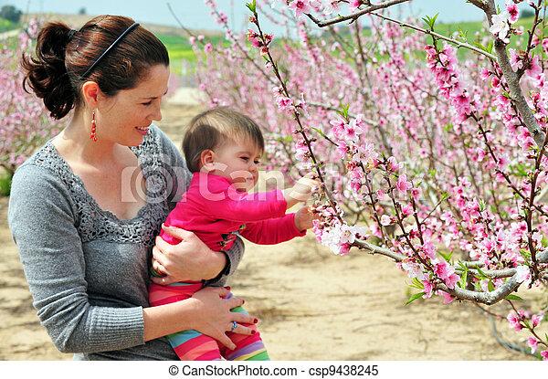 bebé, foto, vida, concepto, - - csp9438245