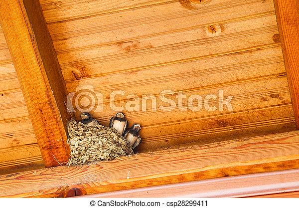 Traga pájaros bebés en el nido - csp28299411