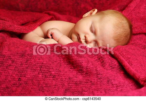 bebê recém-nascido, cobertor, vermelho, dormir - csp6143540