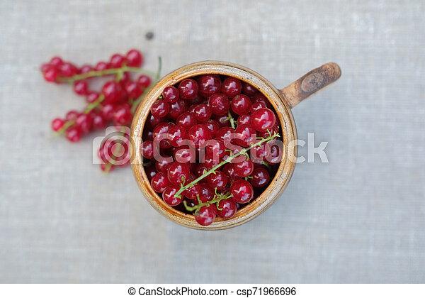 Rote Johannisbeeren in kleinen Tassen auf dem Tisch in weichem Sonnenlicht. - csp71966696