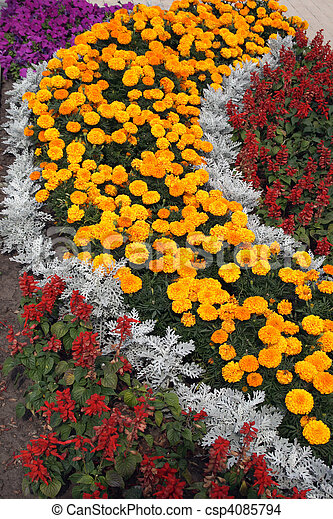 bed of flowers - csp4085794