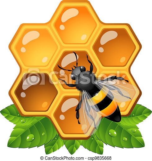 bee on honeycomb eps 10 ai jpeg vector search clip art rh canstockphoto com honeycomb clipart free honeycomb clipart png