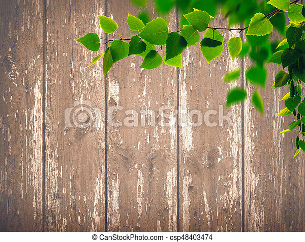 Beech foliage against old wooden desk, abstract natural backgrounds - csp48403474