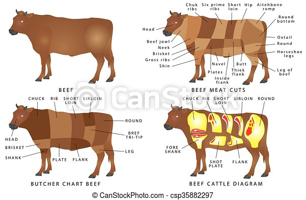 Beef Chart Cuts Of Beef Beef Cuts Diagram Beef Meat Cuts Meat