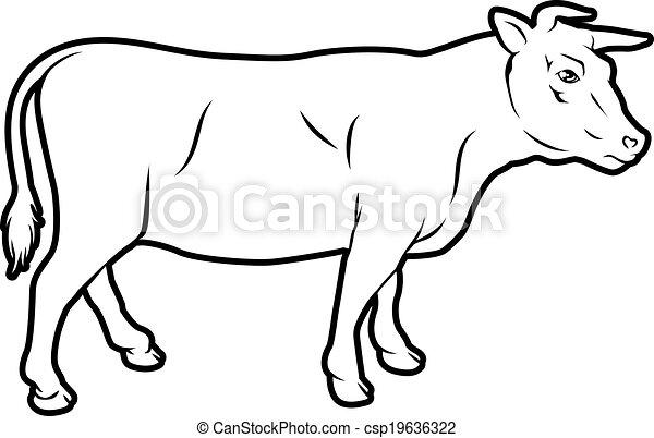 Beef cow illustration - csp19636322