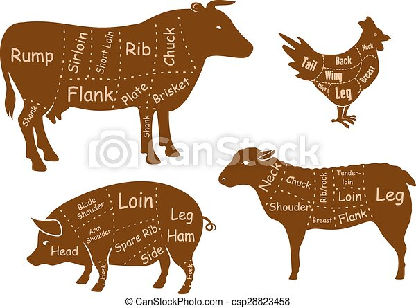 Beef, pork, chicken and lamb meat cuts - csp28823458
