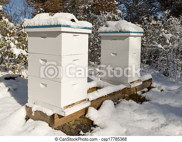 Beehives in the winter - csp17785368
