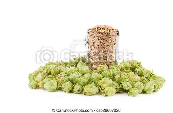 Beer goblet with hop.  - csp26607028