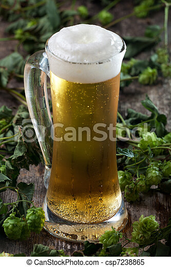 beer in a glass and hop - csp7238865