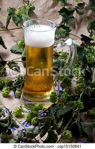 beer in a glass and hop - csp15150841