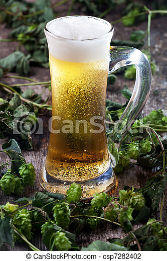beer in a glass and hop - csp7282402