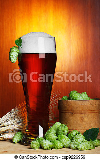 beer with hope and wheat still-life - csp9226959
