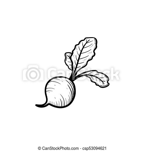 Beet Hand Drawn Sketch Icon Vector Hand Drawn Beet Outline Doodle