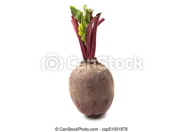 Beetroot isolated - csp51001878