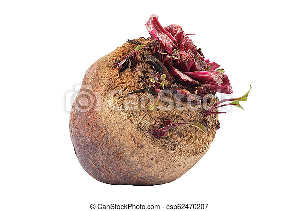 Beetroot on white background - csp62470207