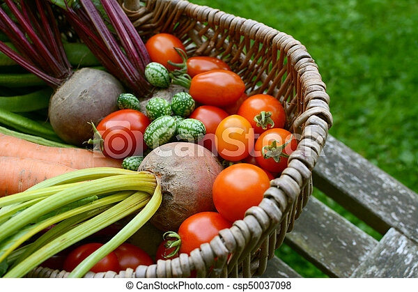 Beetroot, tomatoes, cucamelons and carrots in a wicker basket - csp50037098