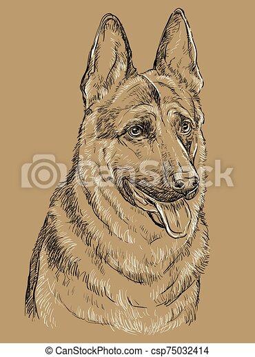 Beige German Shepherd Vector Hand Drawing Portrait German Shepherd Dog Vector Hand Drawing Illustration In Black And White