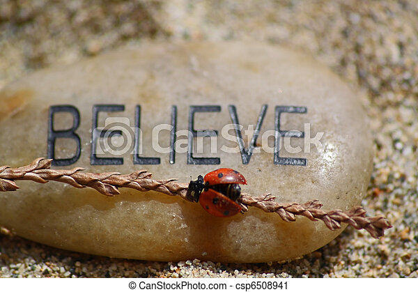 believe rock with a ladybug - csp6508941