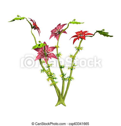 belle, fazendo, rosa, flores brancas, vermelho, 3d - csp63341665