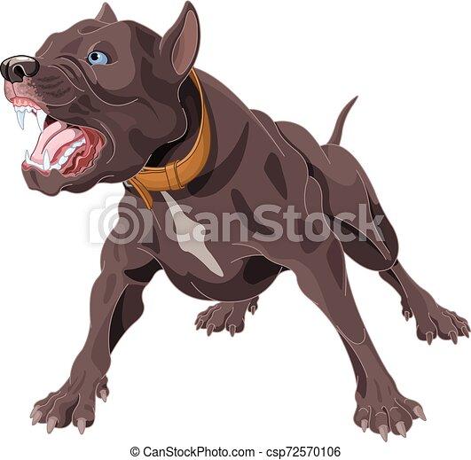 bellenden hund - csp72570106