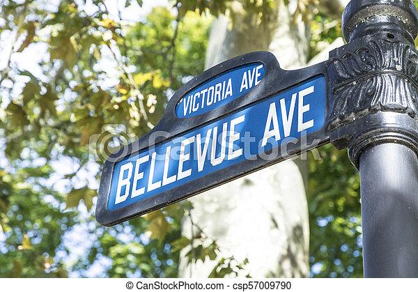 bellevue, ave, ulice, manisons, firma, slavný, dějinný, chodit, bulvár, útes - csp57009790