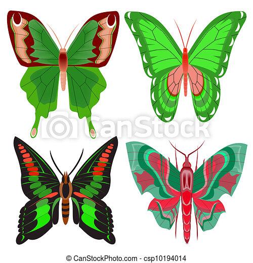 bello, farfalla, bianco, set, fondo - csp10194014