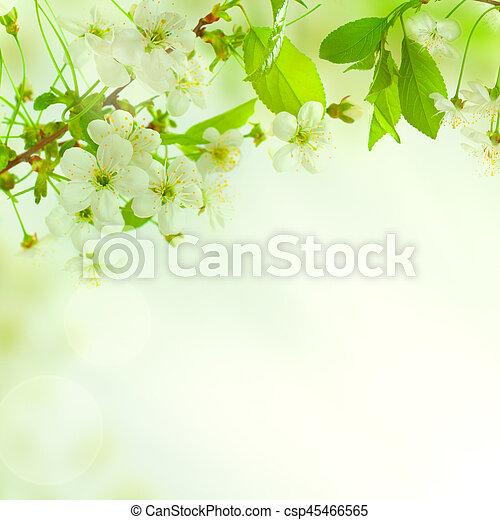 Bello Foglie Sfondo Verde Natura