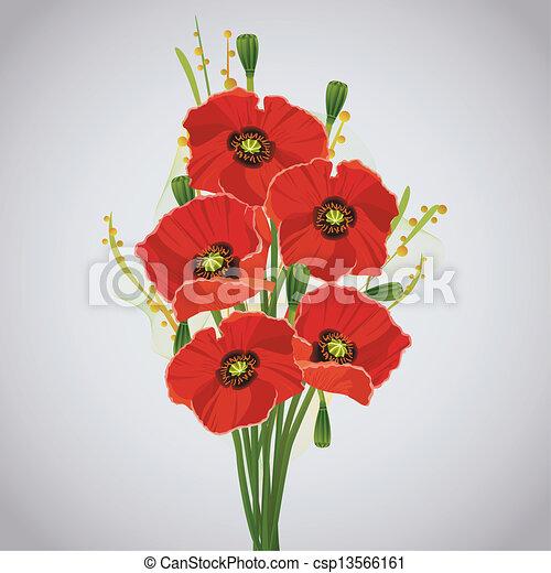 bello, mazzolino, celebratory, rosso, papaveri - csp13566161