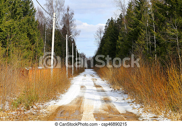 bello, primavera, foresta, strada, foto - csp46890215