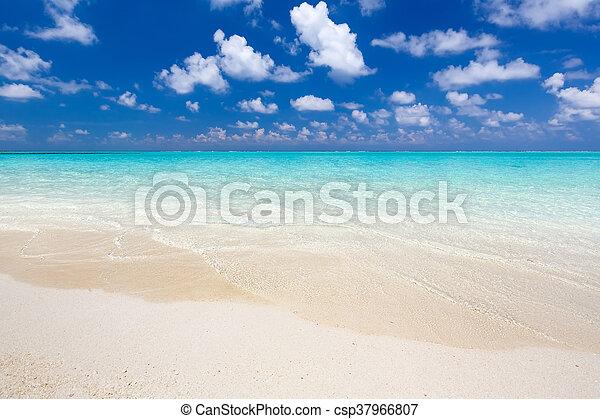 bello, spiaggia, oceano - csp37966807
