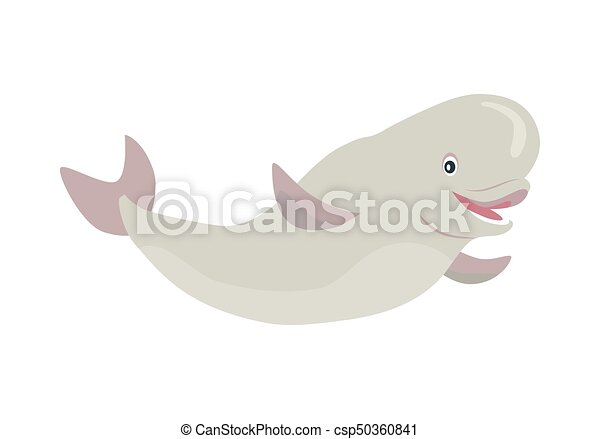 beluga whale cartoon flat vector illustration