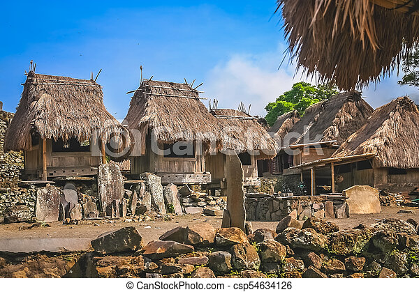 Bena Village In Flores