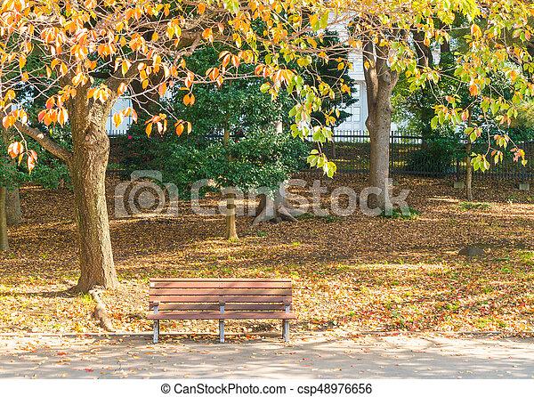 Bench in autumn park - csp48976656