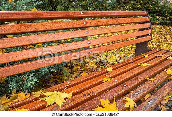 Bench in autumn park - csp31689421
