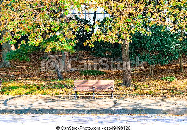 Bench in autumn park - csp49498126