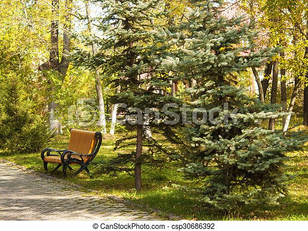 Bench in autumn park - csp30686392