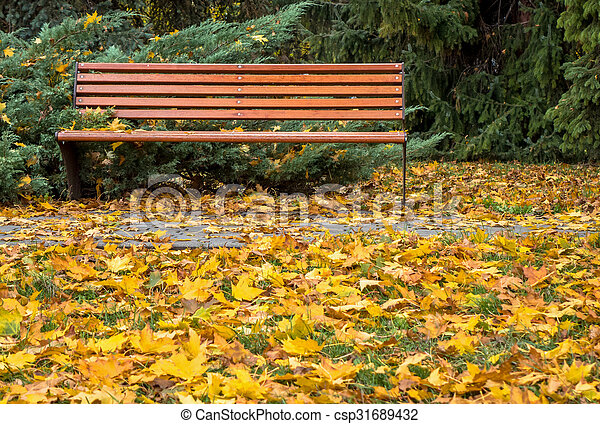 Bench in autumn park - csp31689432