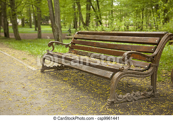 Bench in the park - csp9961441